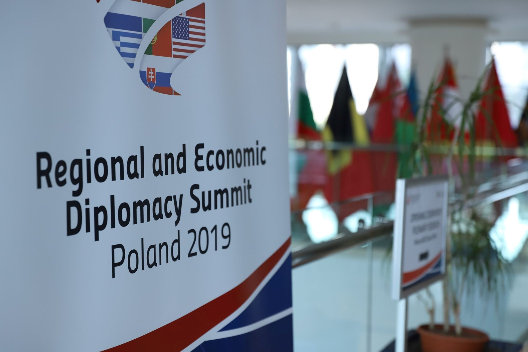 Regional and Economic Diplomacy Summit 2019